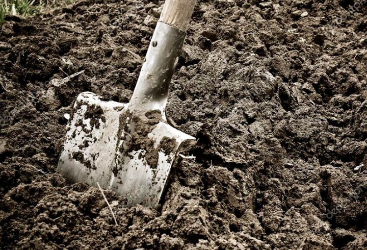 В Подпорожье мужчина убил и похоронил собственного брата, закопав его в газон